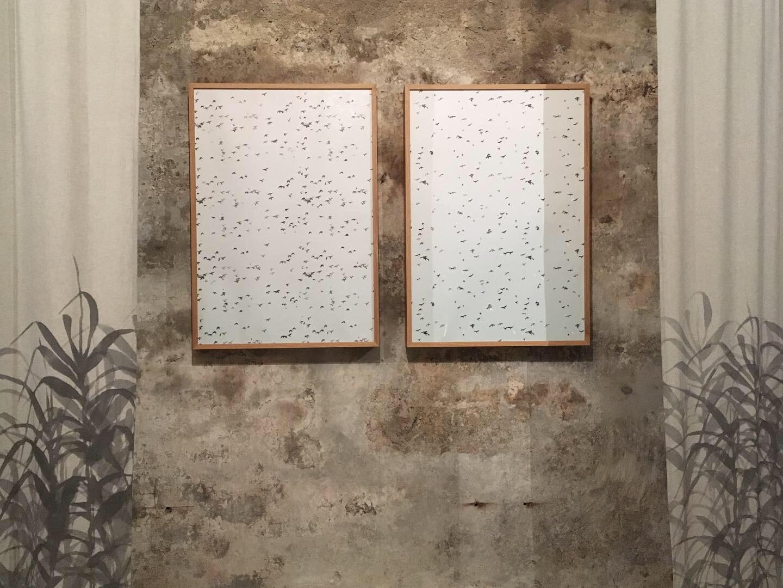 Presentazione Carte_Fondazione Pastificio Cerere_Francesco Ciavaglioli_9